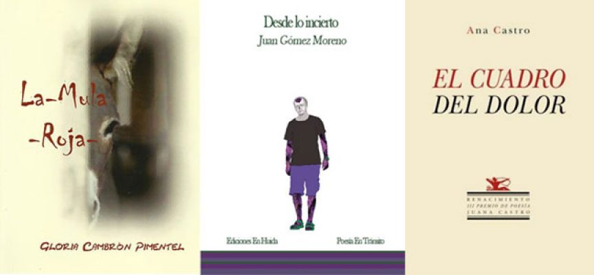 El Premio Solienses apuesta este año por autores noveles