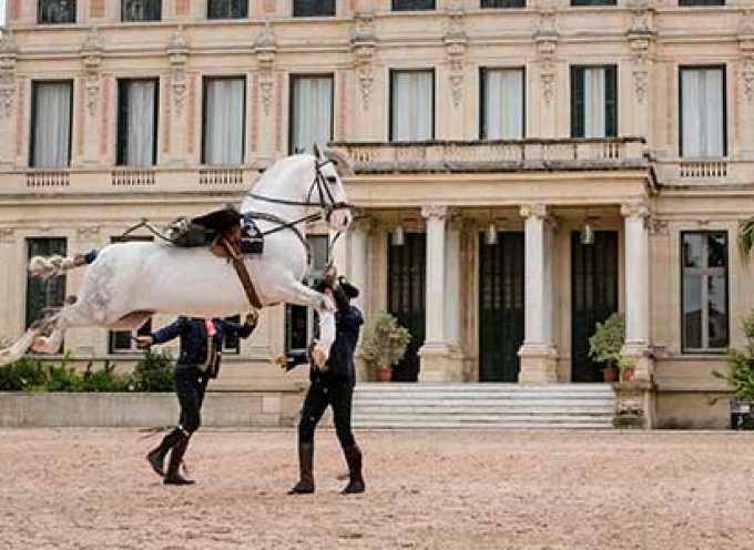 La Real Escuela de Arte Ecuestre de Jerez ofrecerá un espectáculo en la Plaza de Toros de Pozoblanco