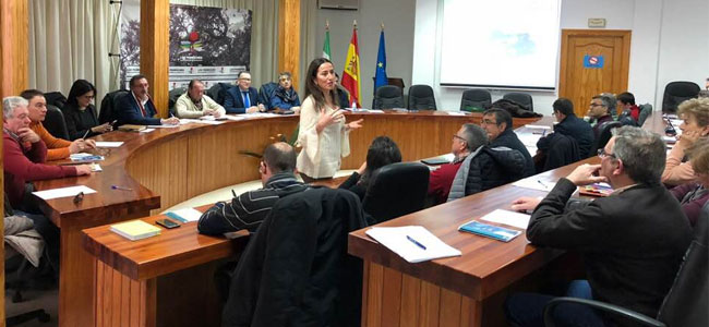 Presentado el borrador de la ordenanza que regulará el alumbrado para la preservación del cielo nocturno de Los Pedroches
