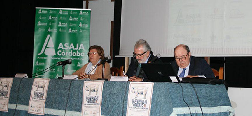 Los ganaderos de Los Pedroches abordan la situación del ibérico y su posibilidad de crecimiento
