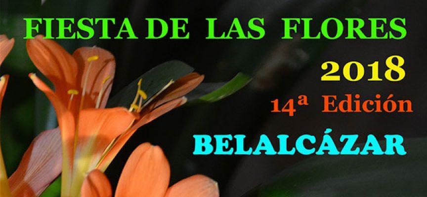 Llega la Fiesta de las Flores a Belalcázar