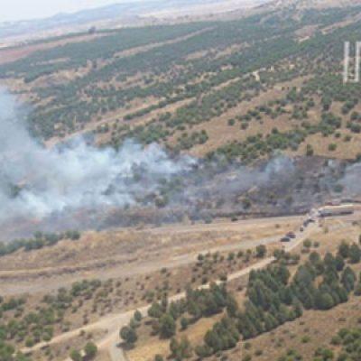 Comienza agosto con un nuevo incendio en Belalcázar