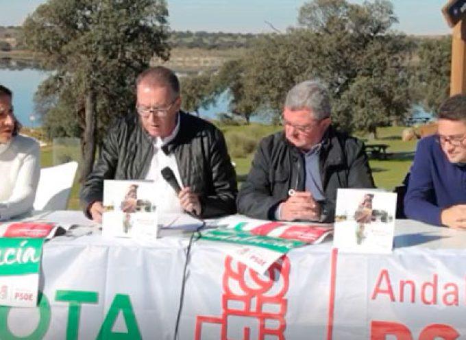 El PSOE acusa al PP de 'falta de respeto por sus continuas críticas e insultos a Los Pedroches'