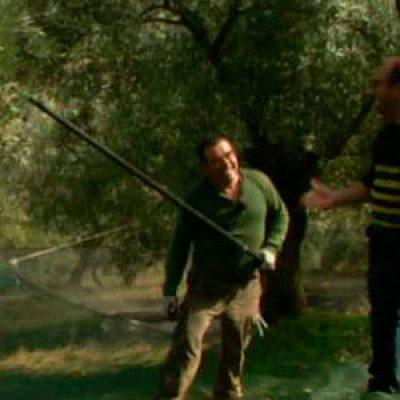 La recogida de aceituna de Pozoblanco en 'Aquí la tierra' [vídeo]