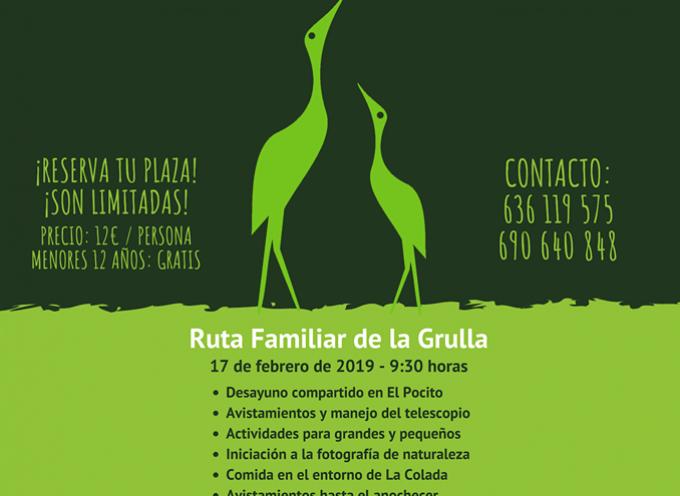 Llega el III Festival de la Grulla a El Viso