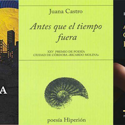 Dos novelas y un poemario compiten por el Premio Solienses 2019