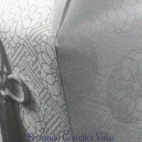 Libro 'El traje del muerto. Novela funeraria', de Fernando González Viñas