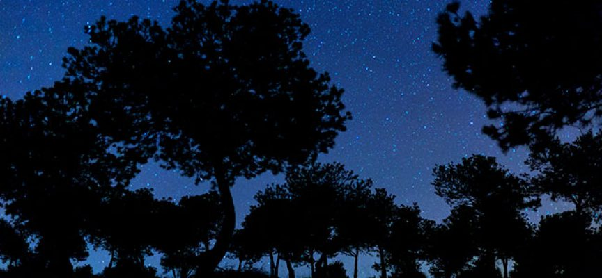 Los cambios de luminaria beneficiarán la visibilización de los cielos de la Reserva Starlight de Los Pedroches