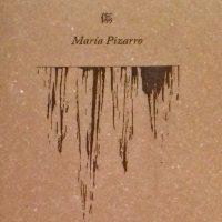 Libro 'La libertad de la herida', de María Pizarro