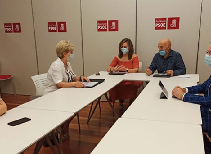 El PSOE de Córdoba traslada a 'Que Pare el Tren en Los Pedroches' que la reposición de trenes se hará de forma paulatina