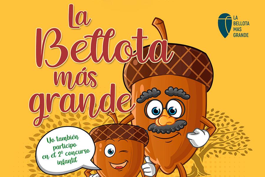 El CIET Los Pedroches organiza el Concurso de la Bellota más grande de la dehesa
