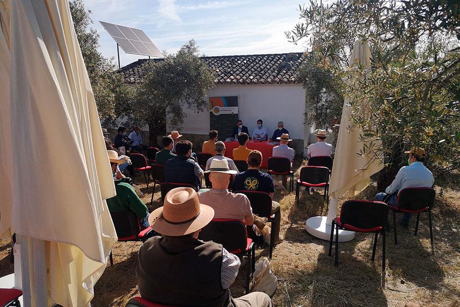 Un grupo de expertos destaca el potencial de la viticultura en Los Pedroches
