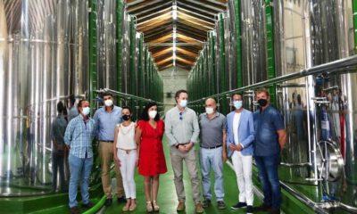 Olipe moderniza el sistema de limpieza de aceitunas en almazara
